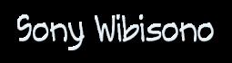 Sony Wibisono